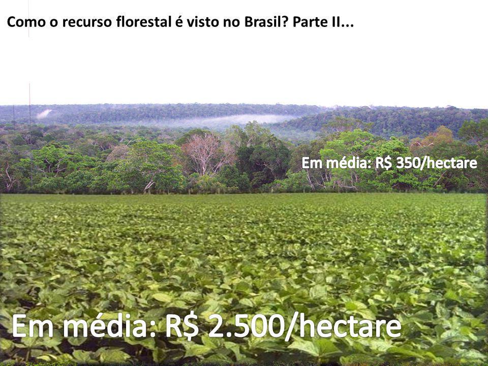 Como o recurso florestal é visto no Brasil Parte II...