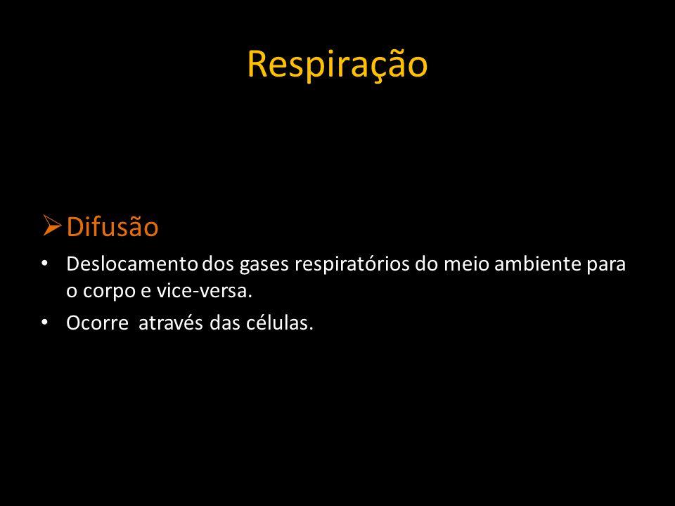 Respiração Difusão. Deslocamento dos gases respiratórios do meio ambiente para o corpo e vice-versa.