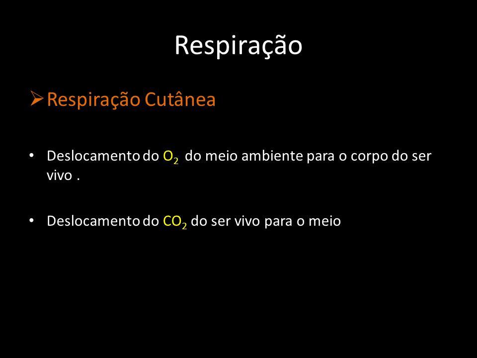 Respiração Respiração Cutânea