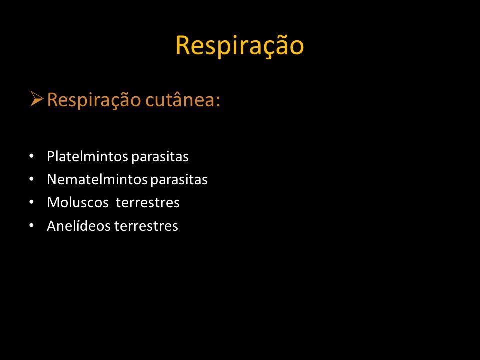 Respiração Respiração cutânea: Platelmintos parasitas