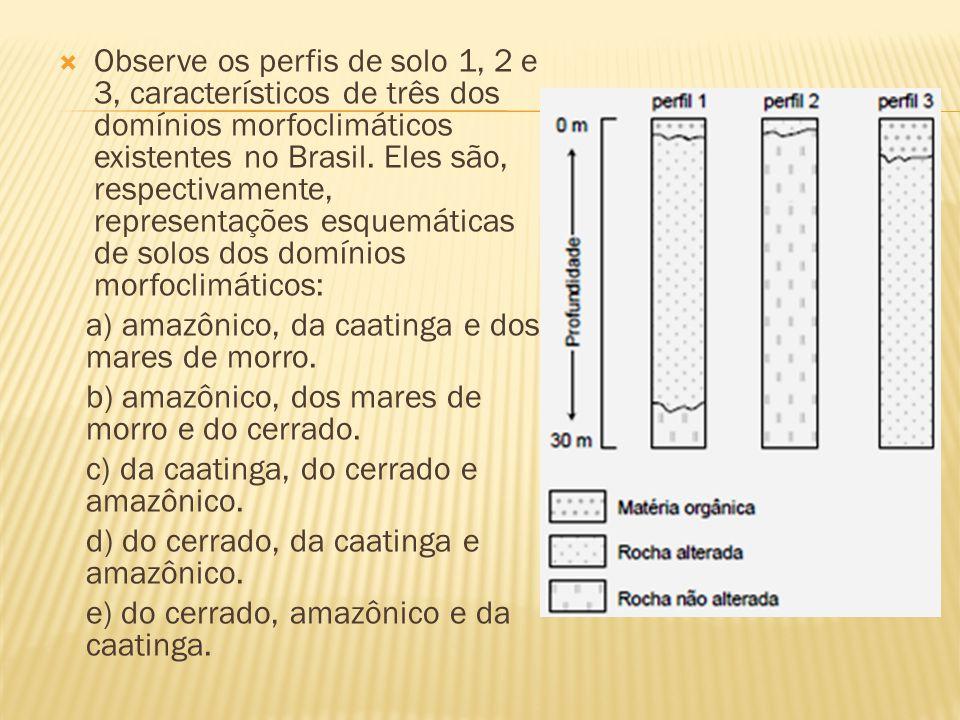 Observe os perfis de solo 1, 2 e 3, característicos de três dos domínios morfoclimáticos existentes no Brasil. Eles são, respectivamente, representações esquemáticas de solos dos domínios morfoclimáticos: