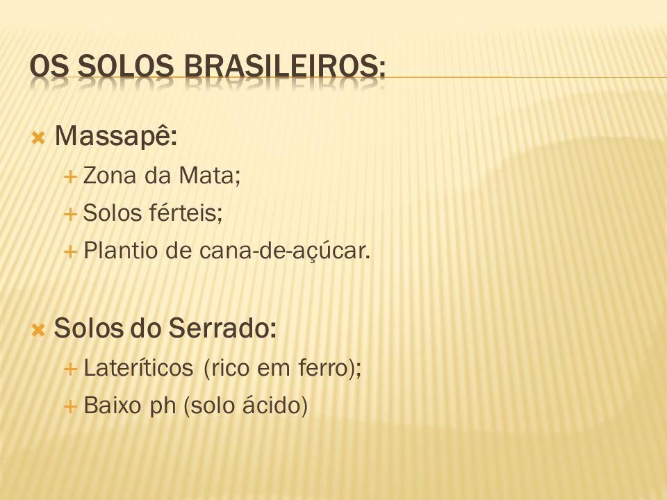 Os solos brasileiros: Massapê: Solos do Serrado: Zona da Mata;