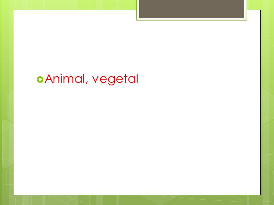 Animal, vegetal