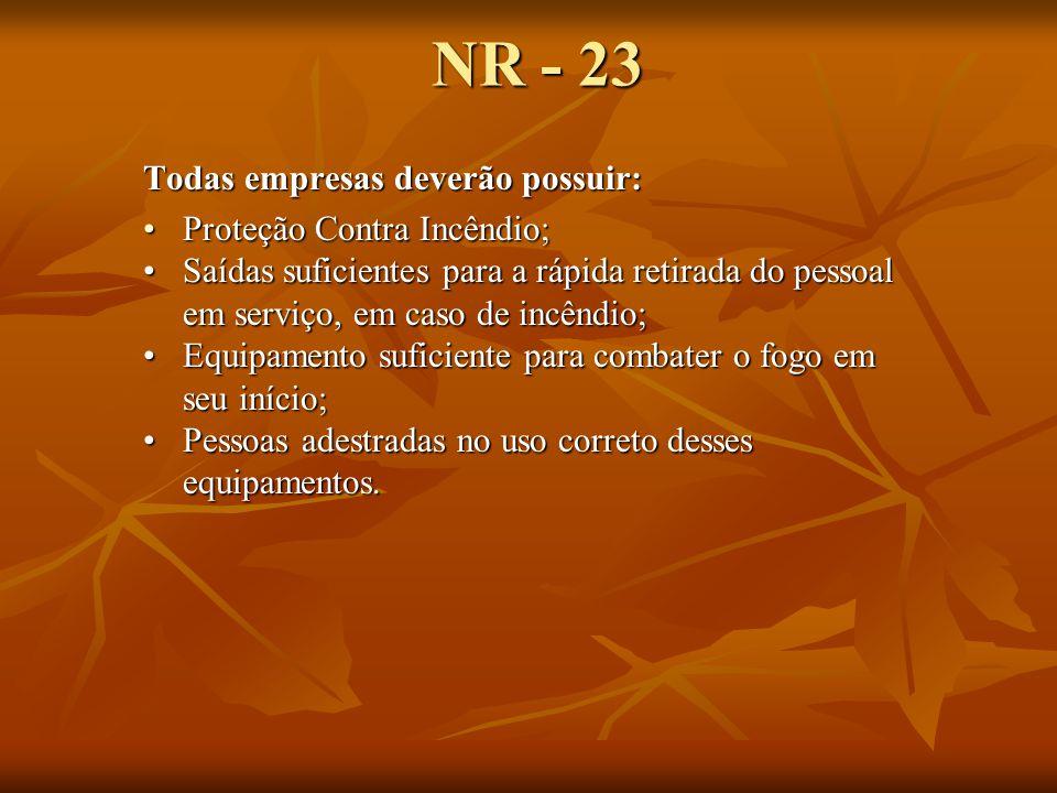 NR - 23 Todas empresas deverão possuir: Proteção Contra Incêndio;