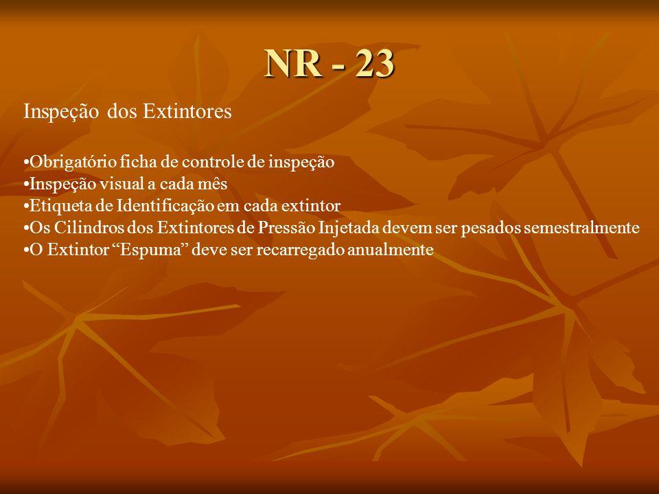NR - 23 Inspeção dos Extintores