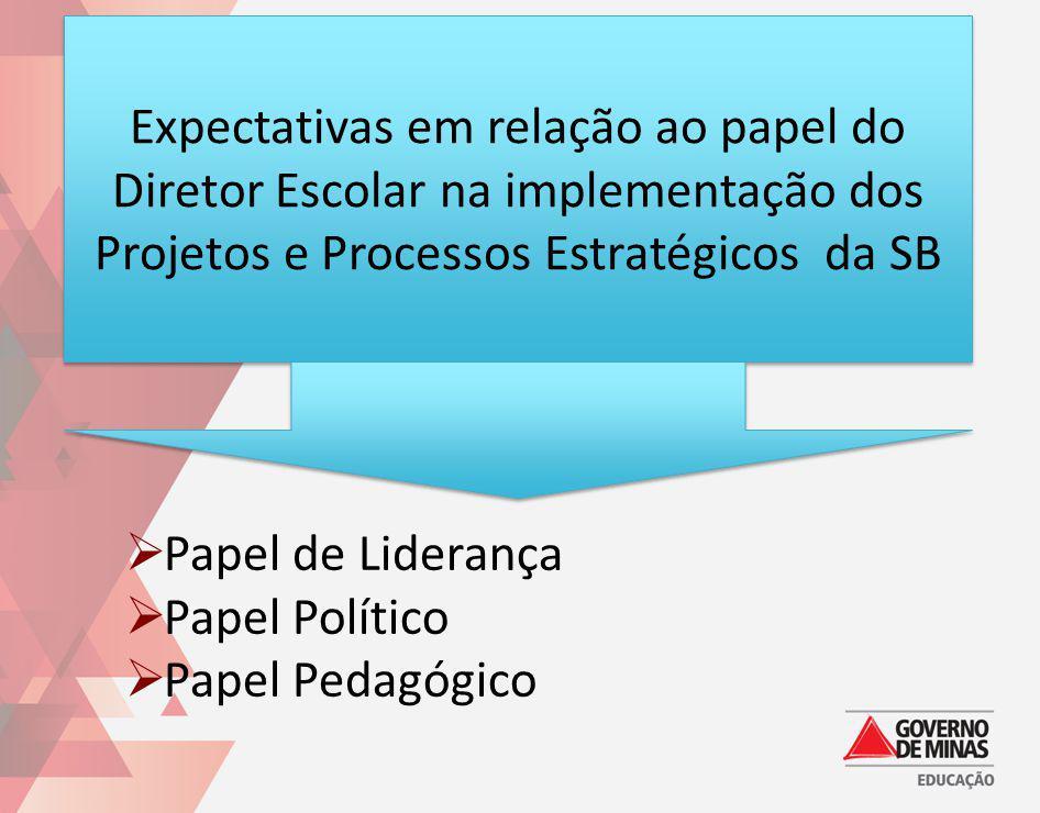 Expectativas em relação ao papel do Diretor Escolar na implementação dos Projetos e Processos Estratégicos da SB