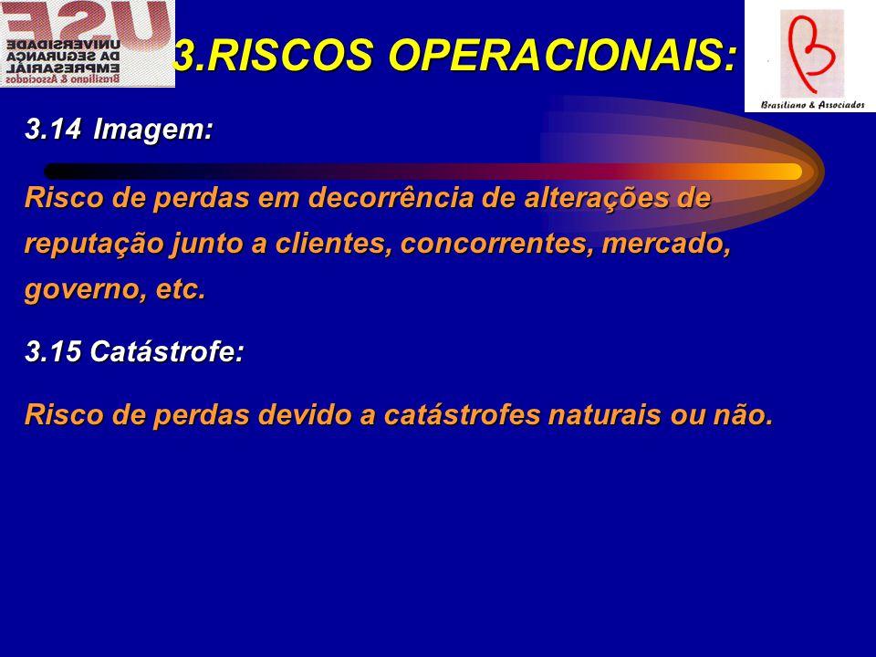 3.RISCOS OPERACIONAIS: 3.14 Imagem: