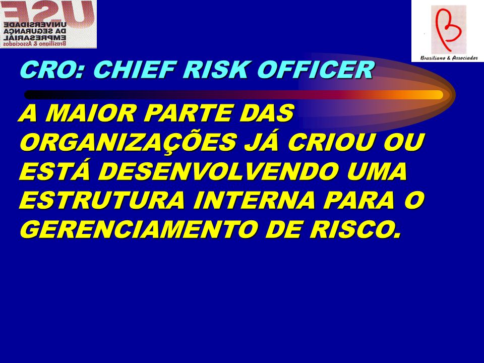 CRO: CHIEF RISK OFFICER