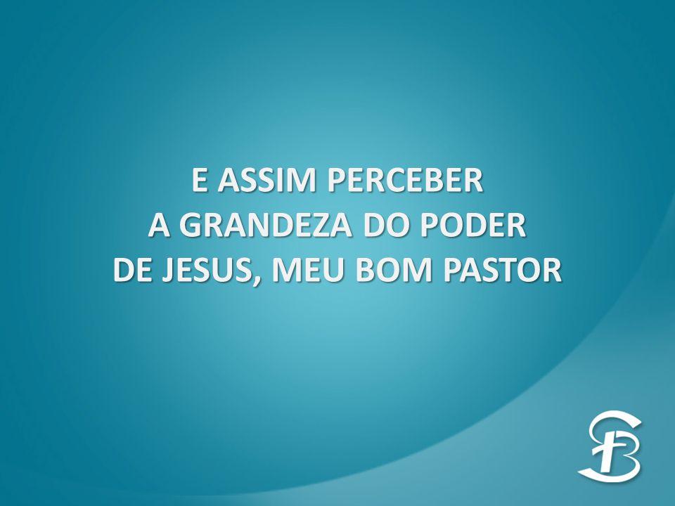 E ASSIM PERCEBER A GRANDEZA DO PODER DE JESUS, MEU BOM PASTOR