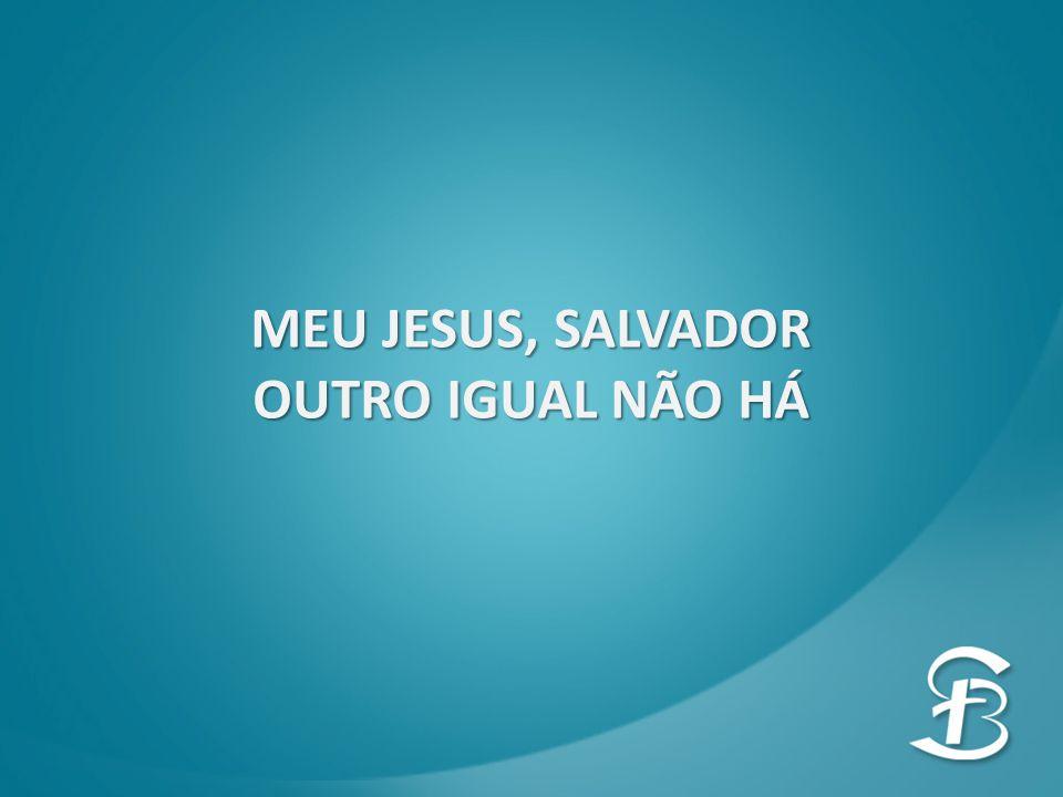MEU JESUS, SALVADOR OUTRO IGUAL NÃO HÁ