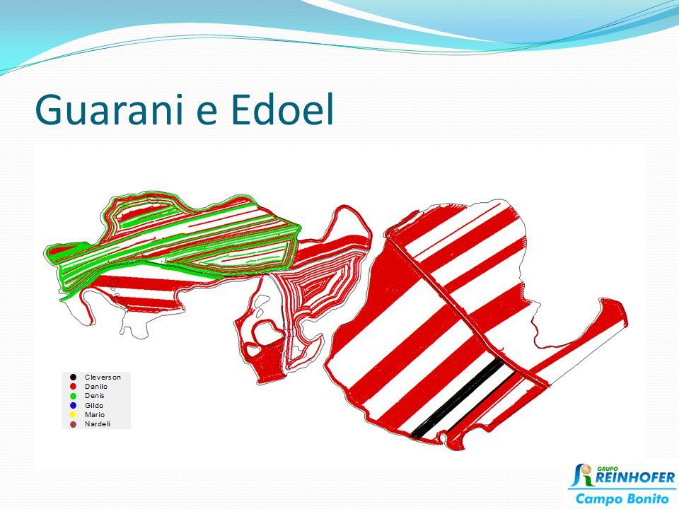 Guarani e Edoel