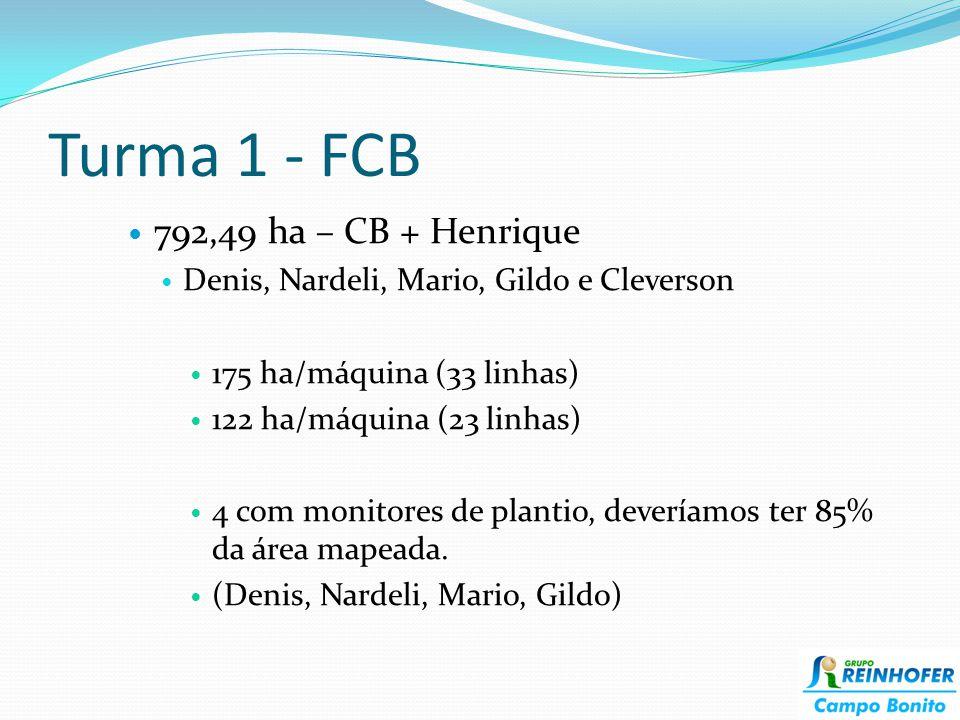 Turma 1 - FCB 792,49 ha – CB + Henrique