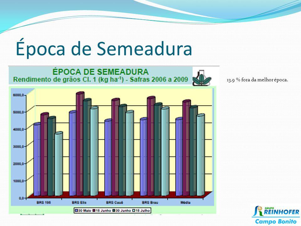 Época de Semeadura 13,9 % fora da melhor época.