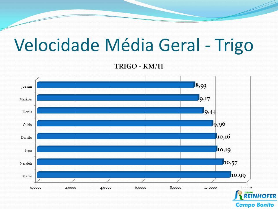 Velocidade Média Geral - Trigo