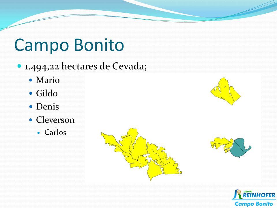 Campo Bonito 1.494,22 hectares de Cevada; Mario Gildo Denis Cleverson