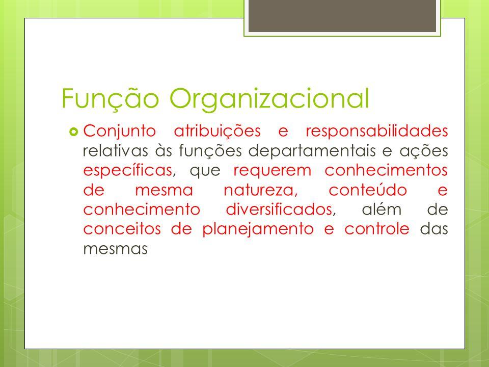Função Organizacional