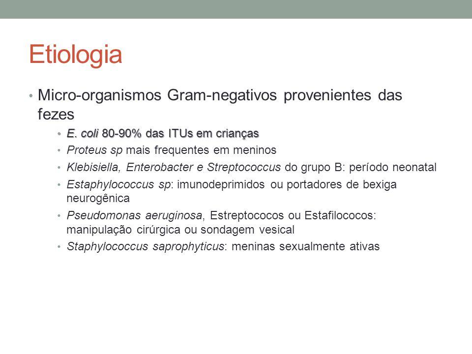 Etiologia Micro-organismos Gram-negativos provenientes das fezes