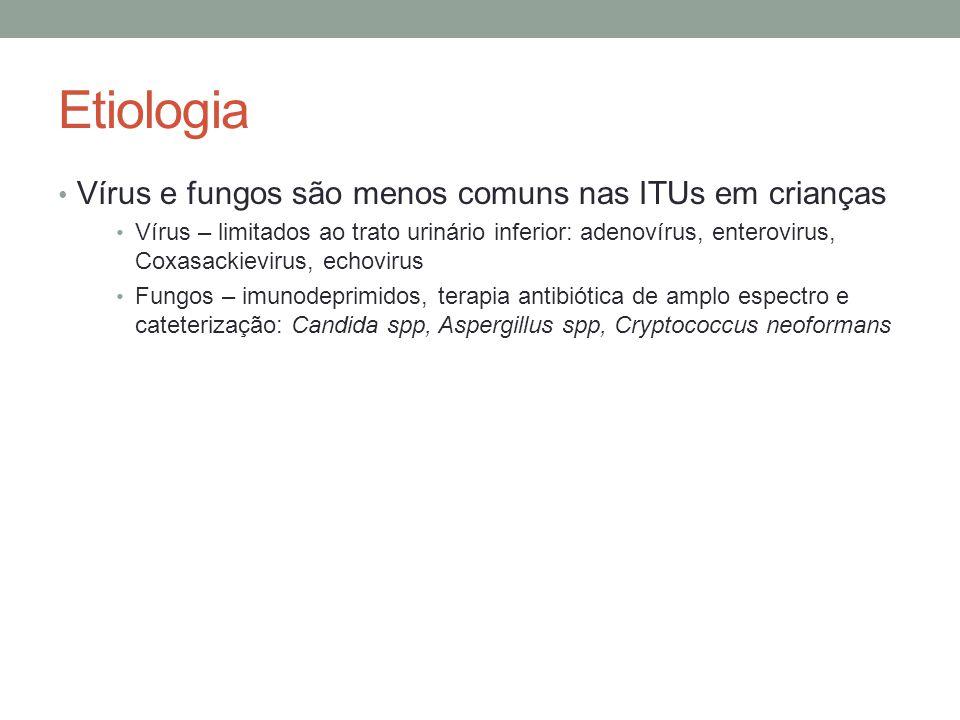 Etiologia Vírus e fungos são menos comuns nas ITUs em crianças