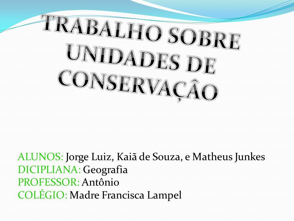 TRABALHO SOBRE UNIDADES DE CONSERVAÇÂO