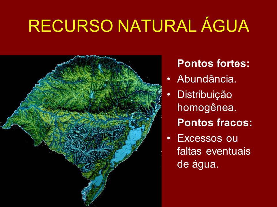 RECURSO NATURAL ÁGUA Pontos fortes: Abundância.
