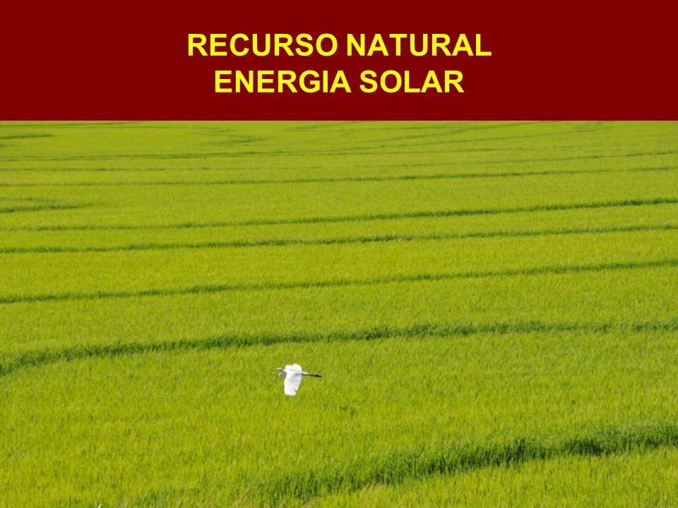 RECURSO NATURAL ENERGIA SOLAR