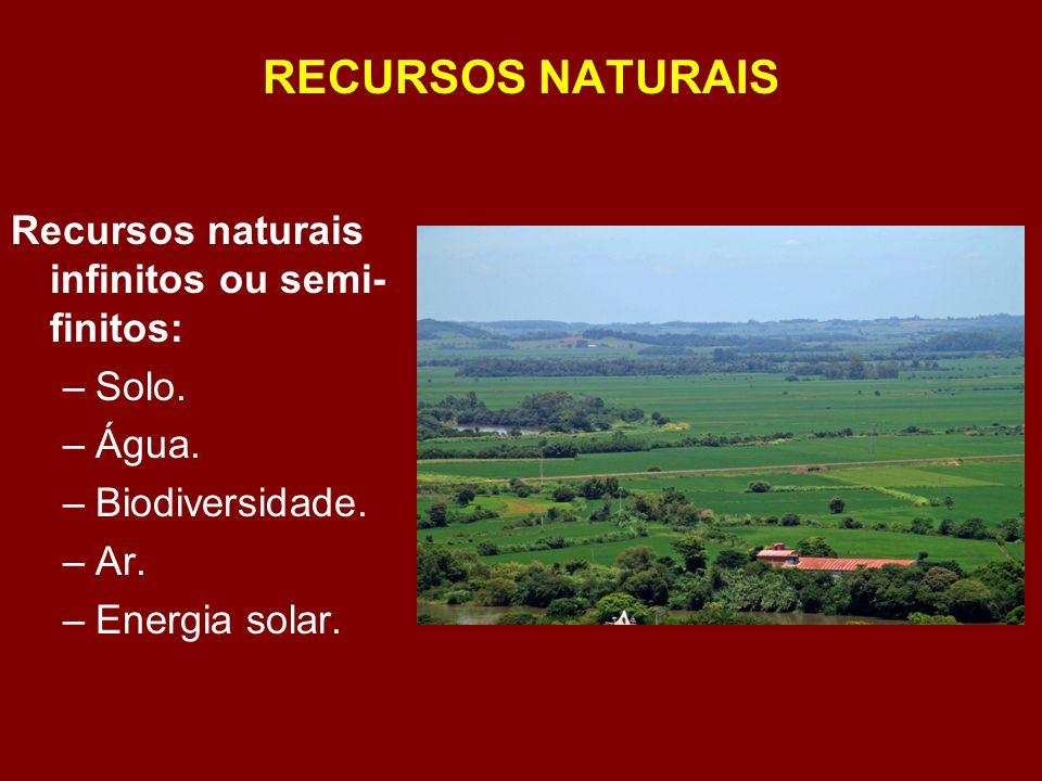 RECURSOS NATURAIS Recursos naturais infinitos ou semi-finitos: Solo.