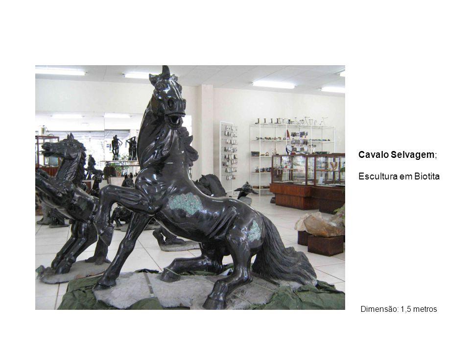 Cavalo Selvagem; Escultura em Biotita Dimensão: 1,5 metros