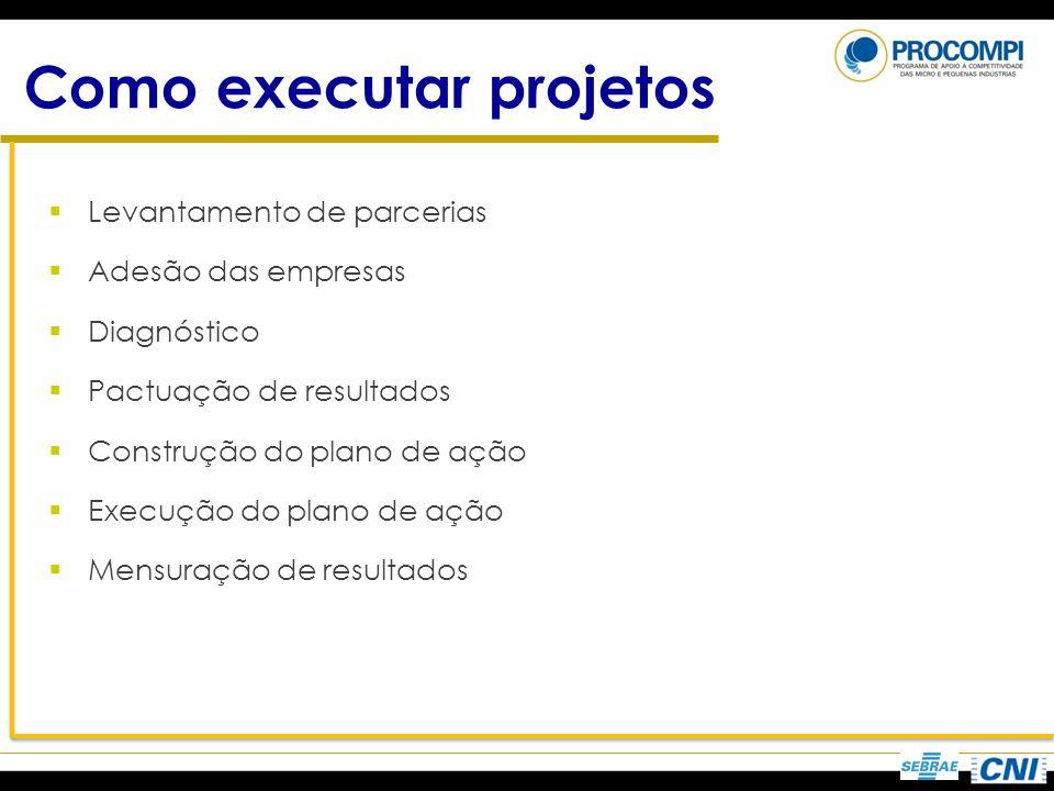 Como executar projetos