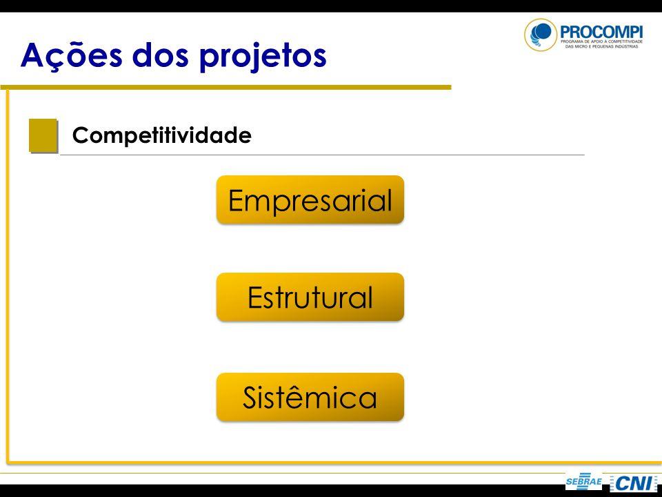 Ações dos projetos Competitividade Empresarial Estrutural Sistêmica