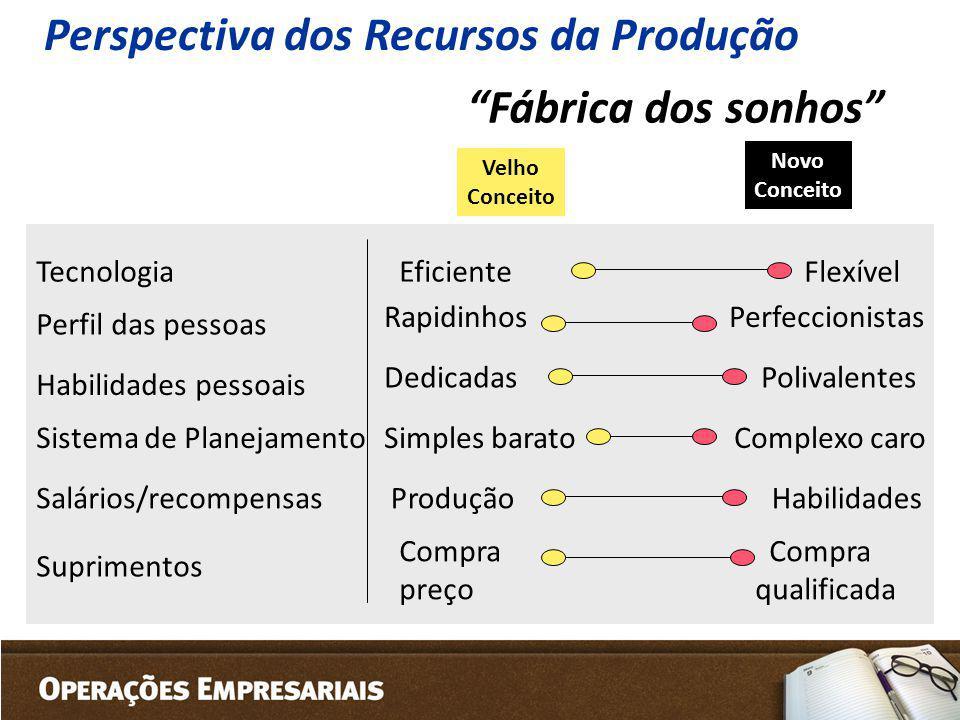 Perspectiva dos Recursos da Produção