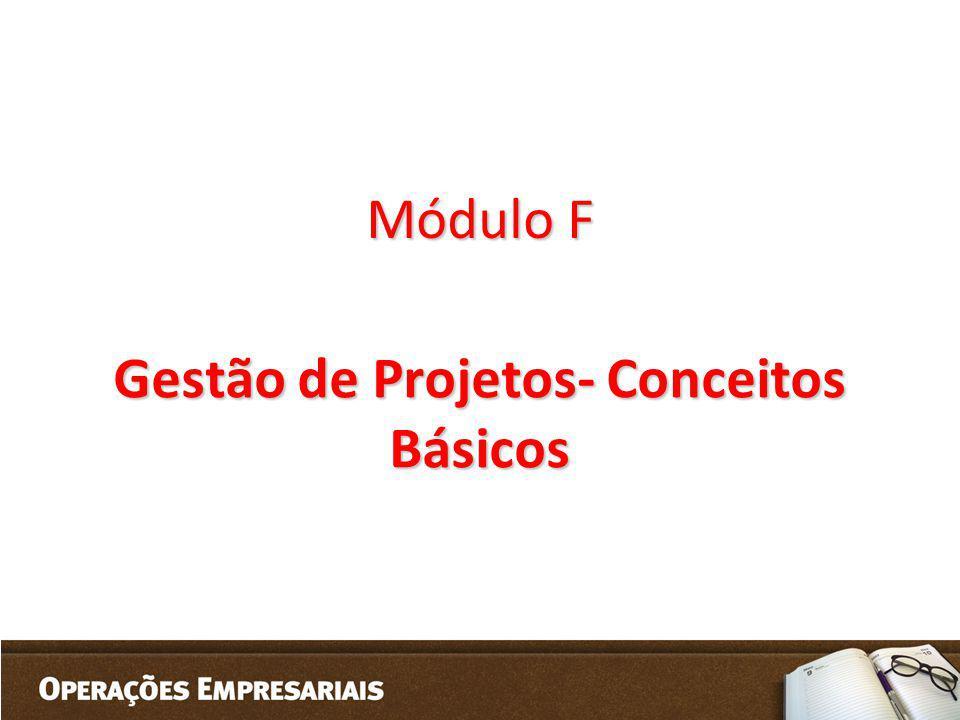 Gestão de Projetos- Conceitos Básicos