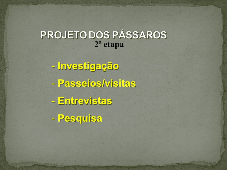 PROJETO DOS PÁSSAROS Investigação Passeios/visitas Entrevistas