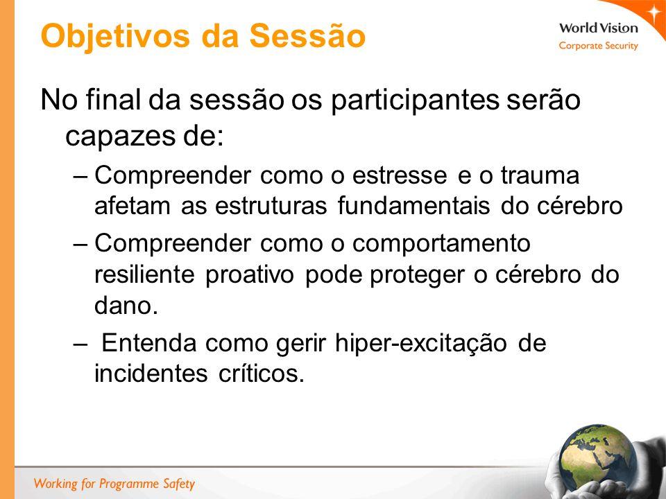 Objetivos da Sessão No final da sessão os participantes serão capazes de: