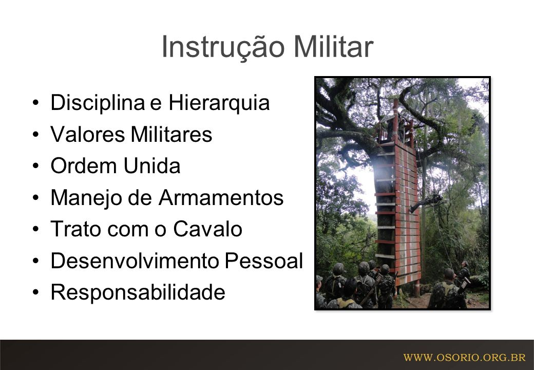 Instrução Militar Disciplina e Hierarquia Valores Militares