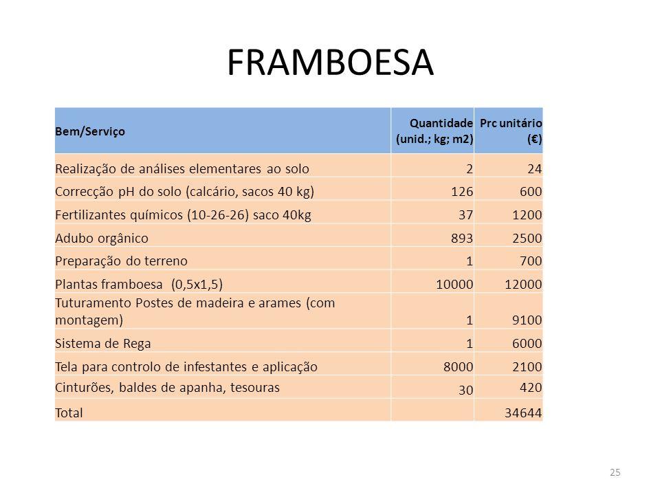 FRAMBOESA Realização de análises elementares ao solo 2 24