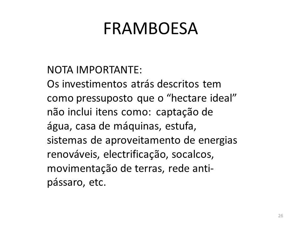 FRAMBOESA NOTA IMPORTANTE: