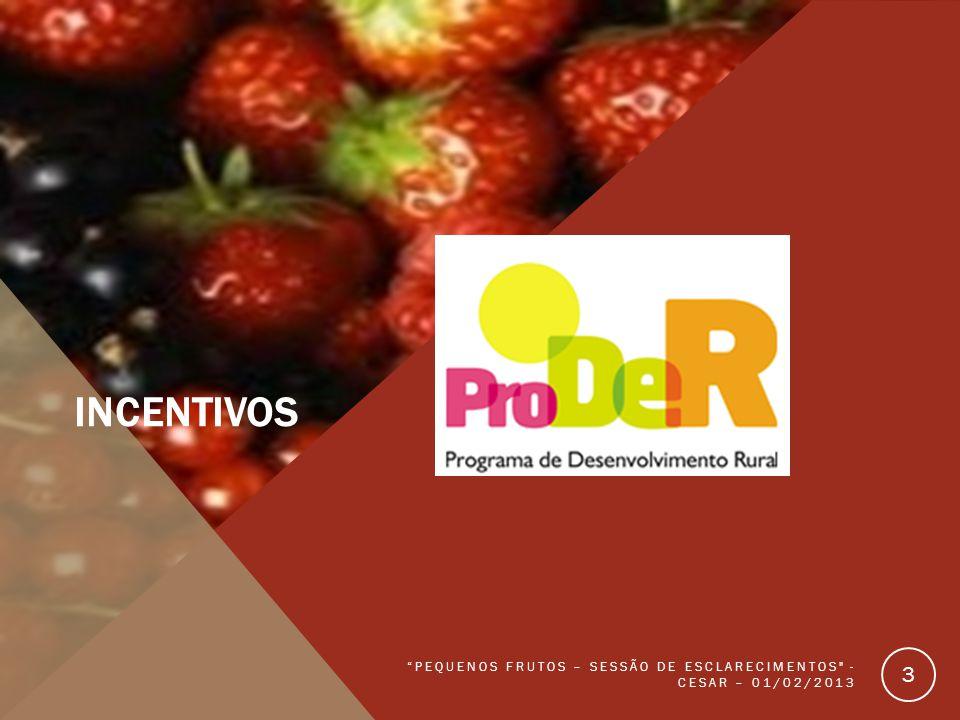 Incentivos pequenos frutos – Sessão de esclarecimentos - cesar – 01/02/2013