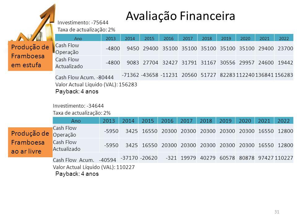 Avaliação Financeira Produção de Framboesa em estufa
