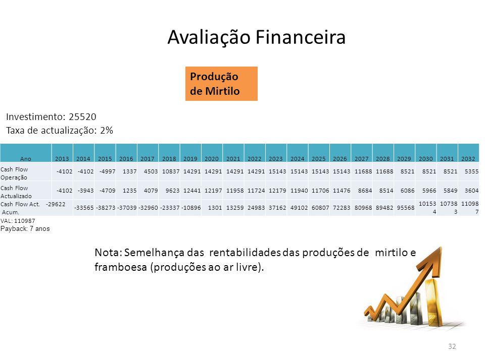 Avaliação Financeira Produção de Mirtilo