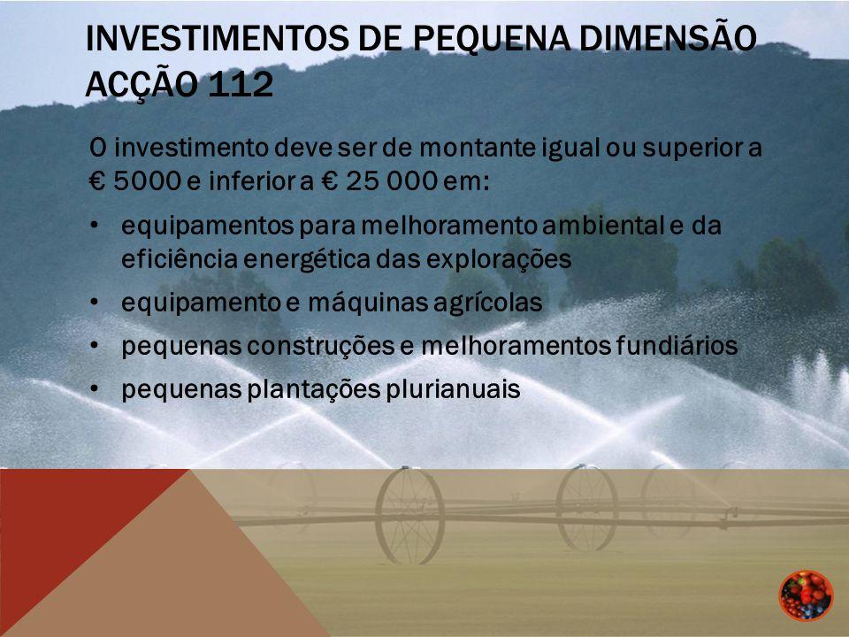 Investimentos de Pequena Dimensão Acção 112