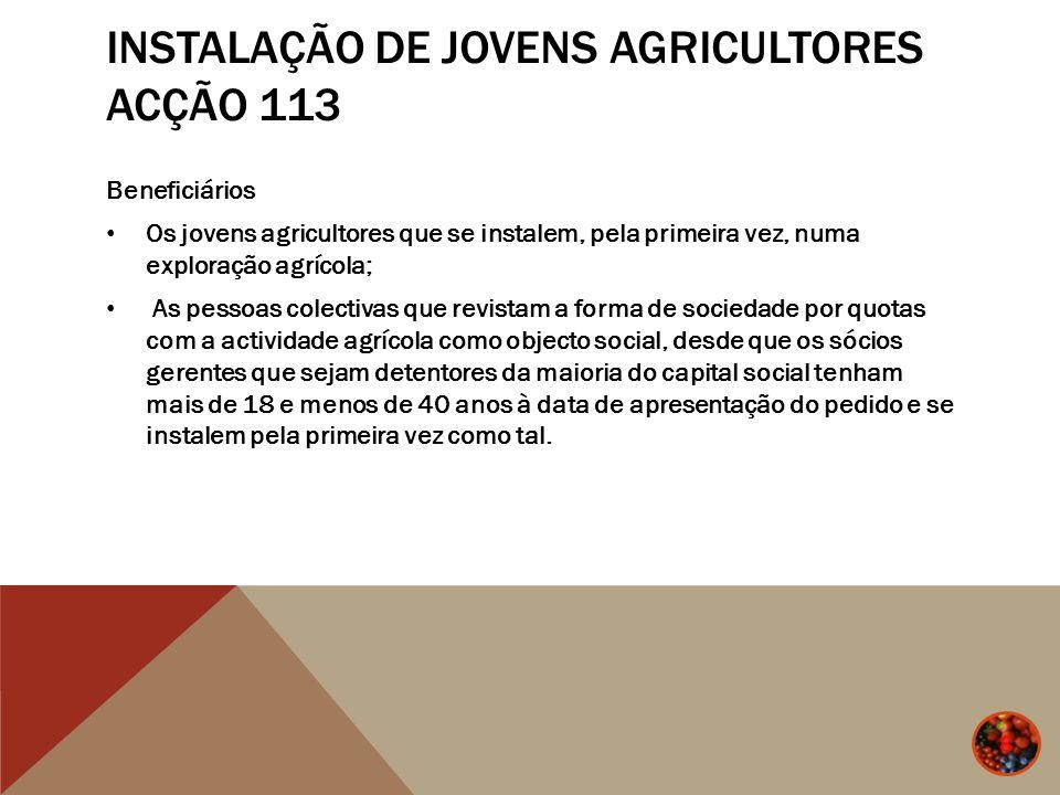 Instalação de jovens agricultores Acção 113