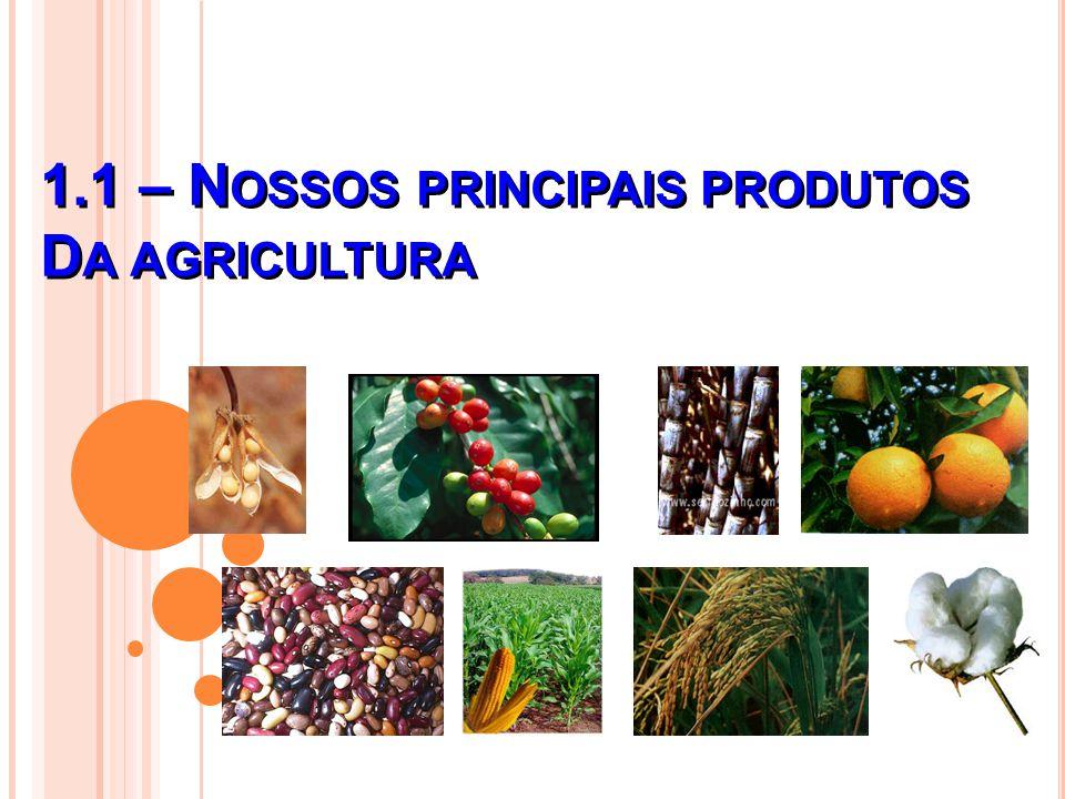 1.1 – Nossos principais produtos Da agricultura