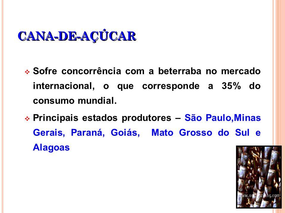 CANA-DE-AÇÚCAR Sofre concorrência com a beterraba no mercado internacional, o que corresponde a 35% do consumo mundial.
