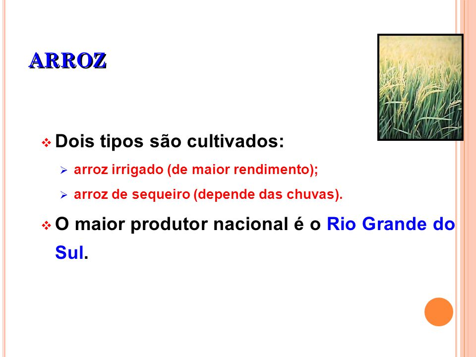 ARROZ Dois tipos são cultivados: