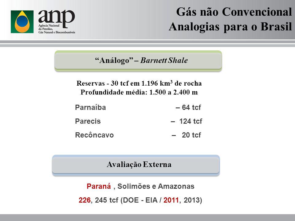 Gás não Convencional Analogias para o Brasil