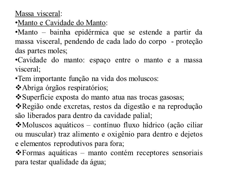 Massa visceral: Manto e Cavidade do Manto: