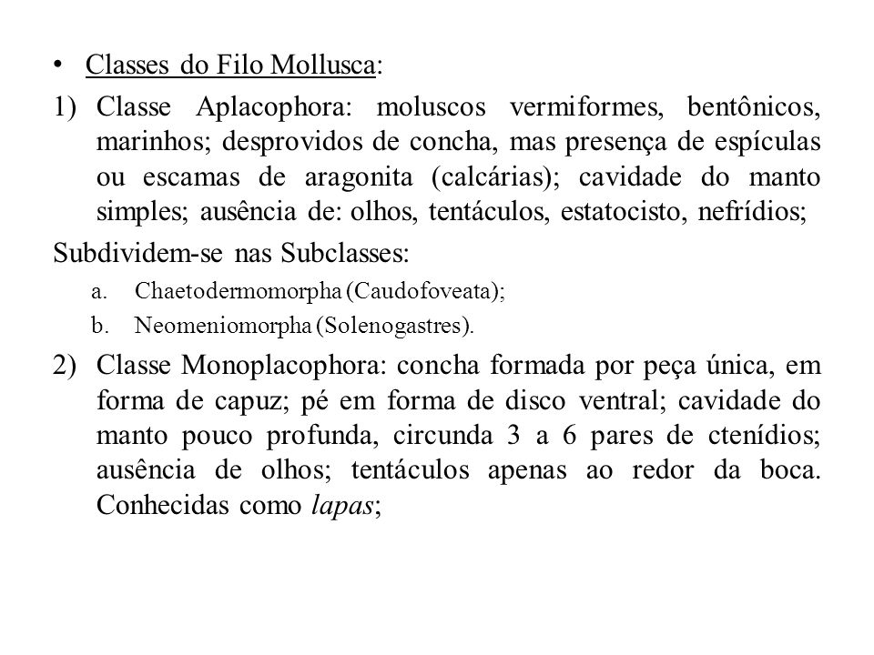 Classes do Filo Mollusca: