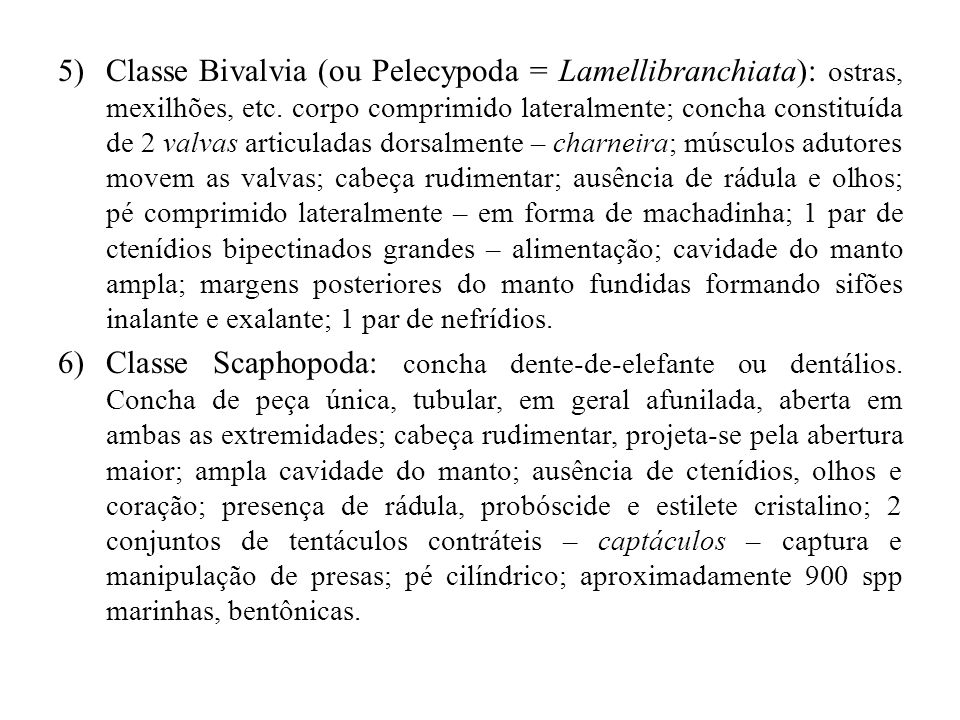 Classe Bivalvia (ou Pelecypoda = Lamellibranchiata): ostras, mexilhões, etc. corpo comprimido lateralmente; concha constituída de 2 valvas articuladas dorsalmente – charneira; músculos adutores movem as valvas; cabeça rudimentar; ausência de rádula e olhos; pé comprimido lateralmente – em forma de machadinha; 1 par de ctenídios bipectinados grandes – alimentação; cavidade do manto ampla; margens posteriores do manto fundidas formando sifões inalante e exalante; 1 par de nefrídios.