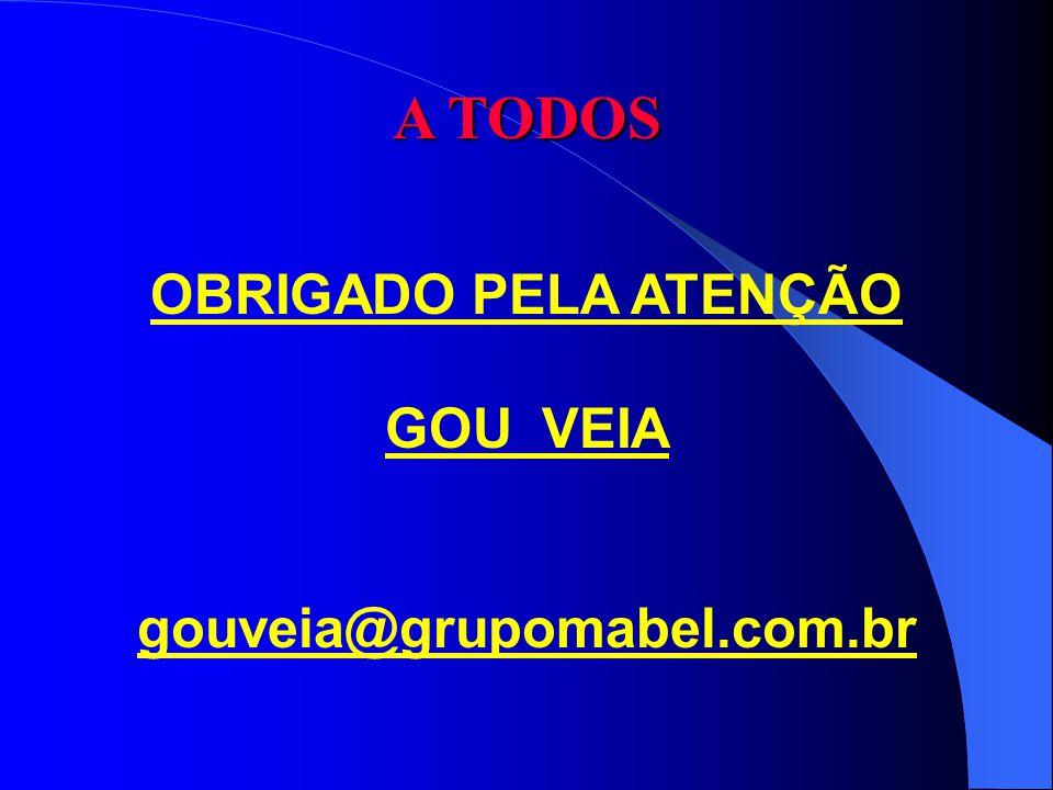 A TODOS OBRIGADO PELA ATENÇÃO GOU VEIA gouveia@grupomabel.com.br