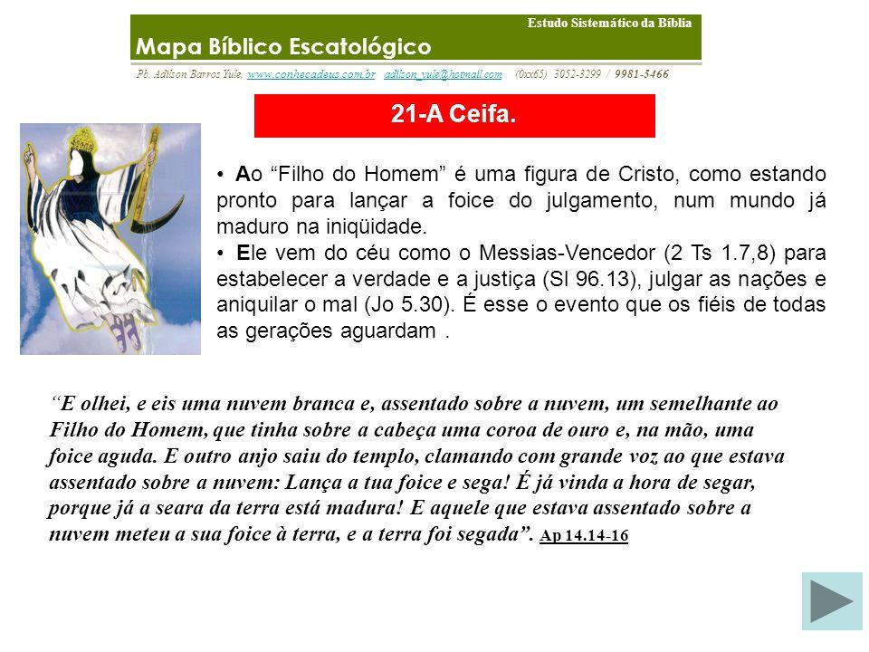 21-A Ceifa. Mapa Bíblico Escatológico